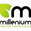 Tropical Millenium