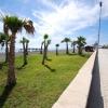 Paseo de Torre del Mar