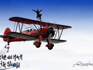 Festival Aéreo Internacional Torre del Mar