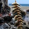 Espeto de sardina en la playa